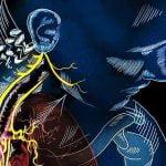 Je za vse kriv vagusni živec? Trenirajmo svoj avtonomni živčni sistem in ne (samo) mišic!